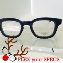Flex your Specs Eyevan 2