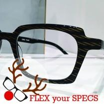 Flex your Specs LA Eyeworks Blakey