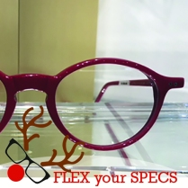 Flex your Specs Lafont Reedition Concerto