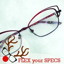 Flex your Specs Lafont Trainon