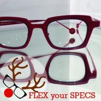 LA Eyeworks Flex your Specs
